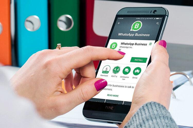 gocom agency agencia de marketing whatsapp business consejo 4
