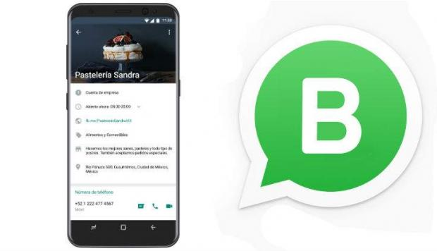 gocom agency agencia de marketing whatsapp business consejo 6
