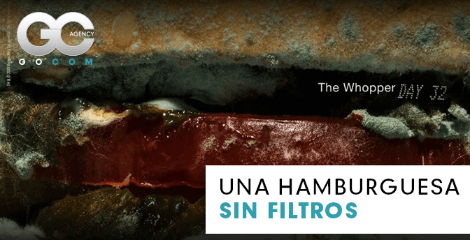 gocom_agencia_de_marketing_digital-the_whopper_hamburguesa_sin_filtros